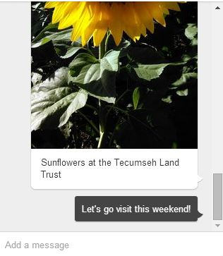 Pinterest messages